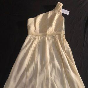 J. Crew Kylie silk chiffon dress size 4